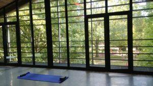 yoga Lille St Maurice Pellevoisin